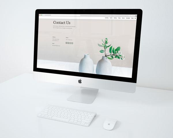Binnen een week staat de complete basis van jouw website online!