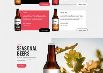 Brouwerij Home Page
